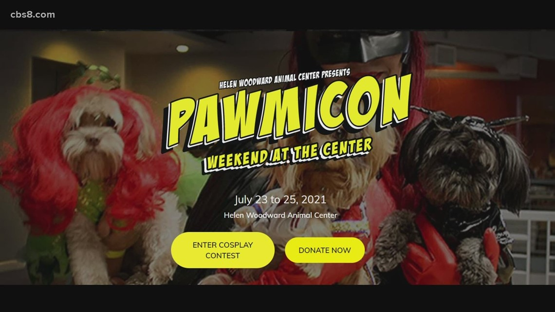 Find a furever friend at Pawmicon