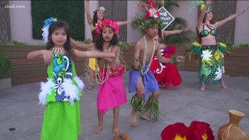 A professional Polynesian dance company shows different styles of dance
