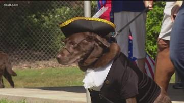 Larry Himmel Memorial Patriotic Pet Contest