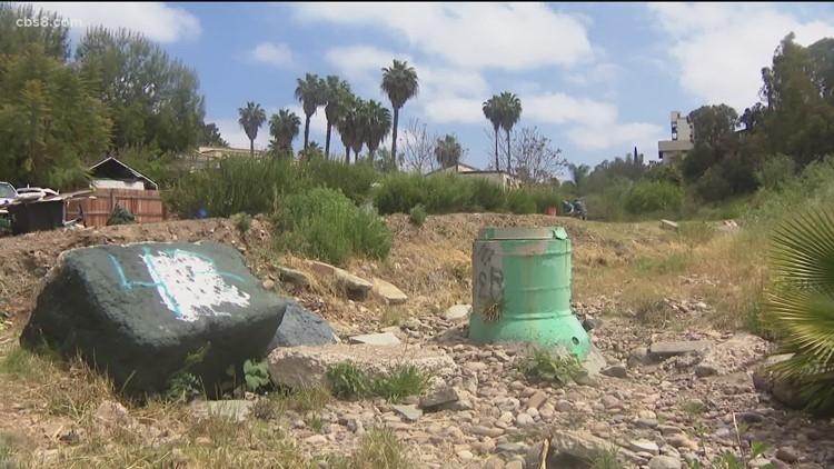 Local volunteers clean San Diego communities as part of Creek to Bay Clean Up