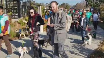 Walk in San Diego Botanic Garden to benefit Rancho Coastal Humane Society