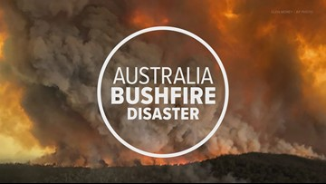 Australia Bushfire Disaster: How to choose the best charities to donate to