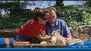 Vintage Himmel - Larry and the lion triplets