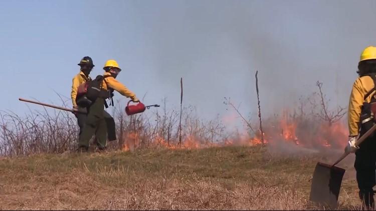 How prescribed burns impact the local environment as fire season picks up