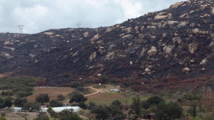 Few fire insurance options left for San Diego County farmers