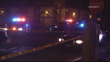 San Diego police charge man with several felonies following officer-involved shooting investigation