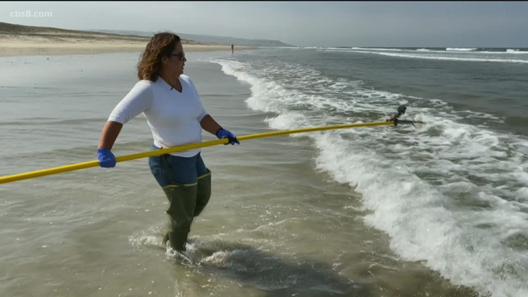 Does the drought help reduce ocean pollution across the South Bay?
