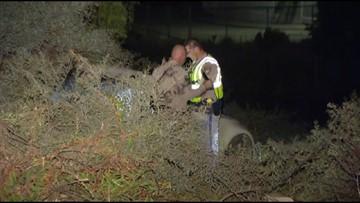 Man dies after car veers off I-805 ramp in City Heights