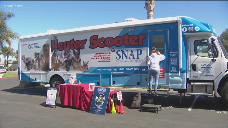Local military pet owners get free spays or neuters for their pets