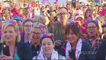 2019 Susan G. Komen San Diego 3-Day