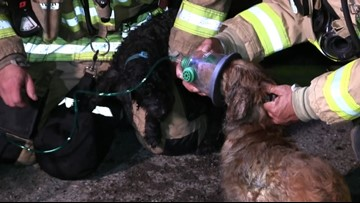 Family of 5 displaced after garage fire spreads to house, kills one dog