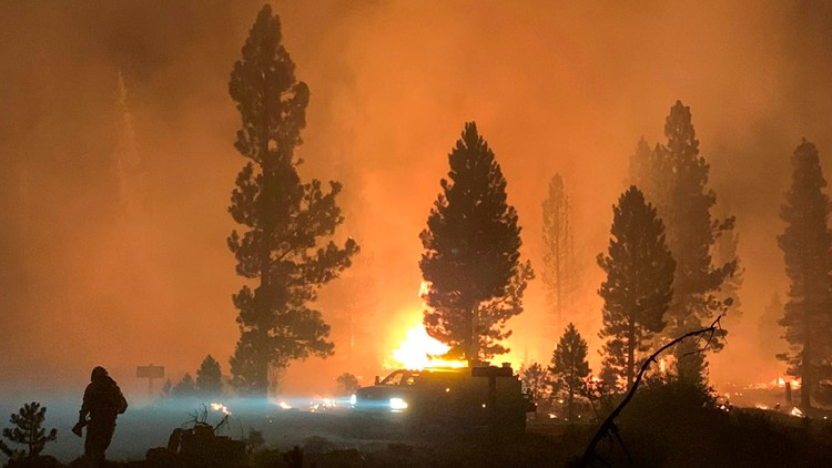 California's 2020 fire siege: wildfires by the numbers