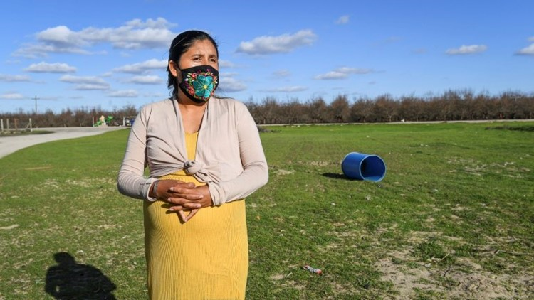 Up in smoke: Burns in San Joaquin Valley vineyards, orchards may finally end