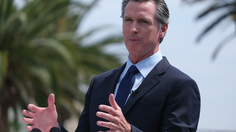 Six things to know about the Newsom recall candidates' tax returns