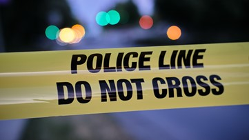 Pedestrian fatally struck on transition road between I-805 and 54 freeways in National City